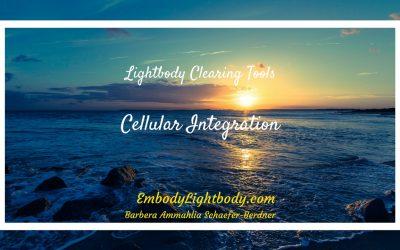 Cellular Integration